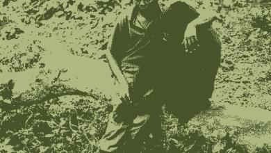 Photo of DIRLJIVO I TUŽNO: Kako RENDŽER u jednom Nacionalnom parku TEŠI GORILU kojoj su lovokradice ubile majku