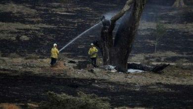 Photo of Australijski požari PO PRVI PUT POD KONTROLOM u Novom Južnom Velsu, posle 6 meseci