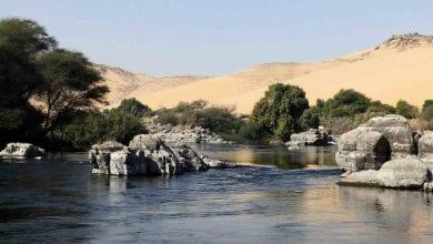 Photo of Naučnici koriste PREČIŠĆENU KANALIZACIONU VODU ZA UZGOJ ŠUME veličine 500 hektara usred pustinje!