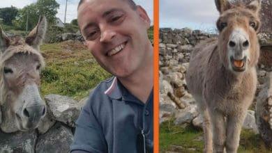 Photo of OPERSKA PEVAČICA: Magarica PEVA SERENADU čoveku koji joj donosi poslastice (VIDEO)