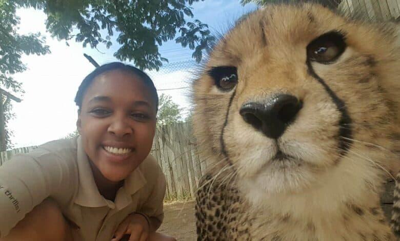 Photo of Zoo vrt je morao da otpusti većinu osoblja, pa su se VRATILI DA BRINU O ŽIVOTINJAMA BESPLATNO