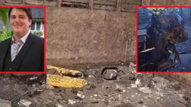 Photo of NAJNOVIJE VESTI: Muškarcu kod koga je pronađen MUMIFICIRAN PAS iz Bosne u Engleskoj – ODUZETE SVE ŽIVOTINJE! (VIDEO)