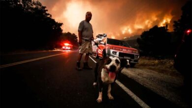 Photo of SLIKA DANA: Čovek sa svoja dva psa, nakon evakuacije zbog razornih požara u Kaliforniji