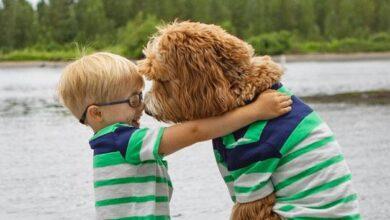 Photo of Trogodišnjak i njegova NERASKIDIVA VEZA SA PSOM
