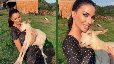 Photo of ĆERKA ŽELJKA JOKSIMOVIĆA NA SELU:  Mina uživa punim plućima okružena KRAVAMA, KOZAMA I SVINJAMA