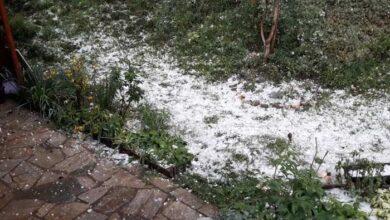 Photo of SNAŽNO NEVREME ZAHVATILO PRIJEPOLJE: Padao grad veličine oraha, stradali voćnjaci i automobili (VIDEO)