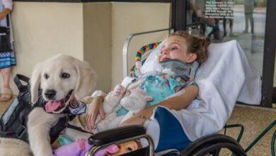 Photo of Paralizovana devojčica se SRELA SA SVOJIM BUDUĆIM TERAPIJSKIM PSOM i veza je postala neraskidiva