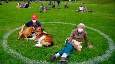 Photo of SLIKA DANA: Vlasnici i psi uživaju u ponovo otvorenom parku u Bogoti, u označenim krugovima zbog mera distance