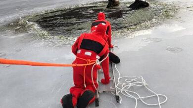 Photo of Hrabri ljudi SPASILI DVA KONJA iz zaleđenog jezera (VIDEO)
