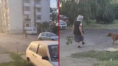 Photo of STRAŠNO: Starija žena ŠUTIRALA MAČE od 3 nedelje, I STRAVIČNO MU POVREDILA OKO! (VIDEO)