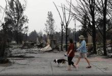 Photo of SLIKA DANA: Ljudi šetaju psa pored požarom uništenog doma u Talentu, u Oregonu