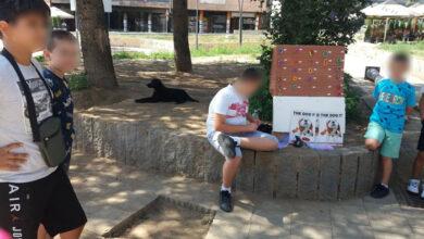 Photo of Deca u Kosovskoj Mitrovici PLETU I PRODAJU NARUKVICE, kako bi SAKUPILI NOVAC za pomoć psima na ulici