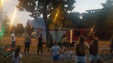 Photo of Na Novom Beogradu vatrogasci SPASILI MAČE I DEVOJKU, koja je pokušala sama da je spasi