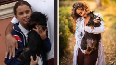 Photo of VEOMA DIRLJIVO: Devojka se OPOSTILA od svog voljenog PSA DŽULI, posle 20 GODINA