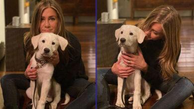 Photo of ZAHVALNA NA LJUBAVI: Dženifer Aniston sa svojim psićem Lordom na Dan zahvalnosti