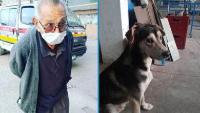 Photo of Ovaj stariji čovek je PONUDIO SVOJU ŽIVOTNU UŠTEĐEVINU, kako bi pronašao izgubljenog psa