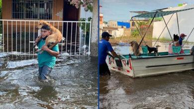 Photo of Poplave u meksičkoj državi Tabasko PRISILILE SU SVE NA EVAKUACIJU