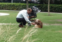 Photo of Čovek stalno vodi SVOG STARIJEG I SLEPOG PSA U KOLICIMA u park, kako bi osetio miris trave