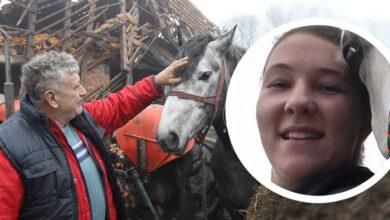 Photo of Slovenka videla fotografiju SPASENOG KONJA, pa dovezla 7 TONA HRANE za životinje Gline i okoline!