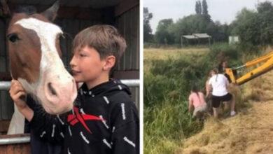 Photo of Konj je UPAO U LEDENI KANAL i počeo da se DAVI, 13-godišnji dečak je USKOČIO I SPASIO GA