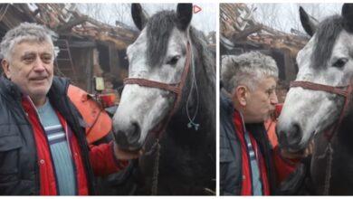 Photo of TOMO JE IZ RUŠEVINA SPASIO SVOG VOLJENOG KONJA: Emotivan prizor iz Majskih Poljana (VIDEO)