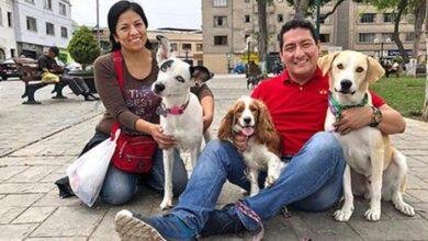 Photo of Pas koji je 3 DANA ČEKAO VLASNIKA koji je preminuo ispred bolnice, JE UDOMLJEN!