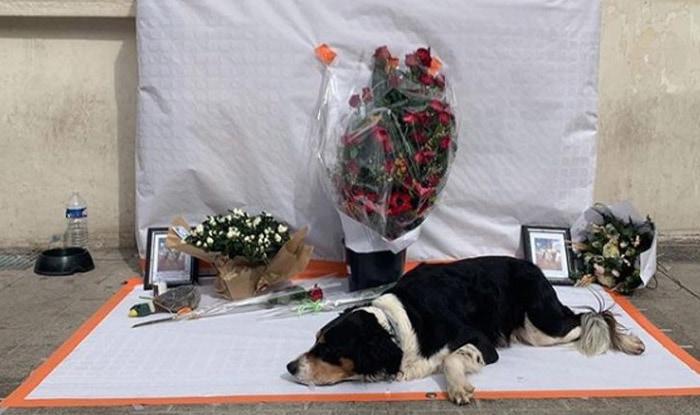 Photo of Beskućnik je UMRO OD TUGE nakon što mu je UKRADEN PAS, negov jedini prijatelj