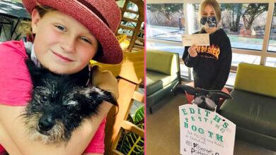Photo of Devojčica PRIKUPLJA NOVAC za životinje u prihvatilištu, tako što NAPLAĆUJE MAŽENJE SVOG PSA