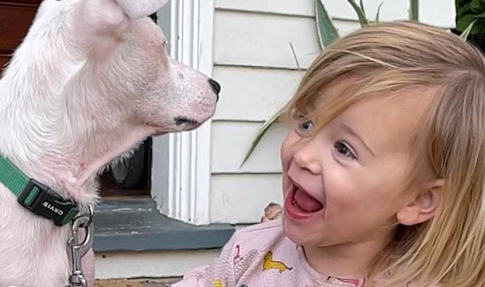 Photo of Dvogodišnja devojčica ubedila mamu da UDOMI GLUVO ŠTENE od komšije (VIDEO)