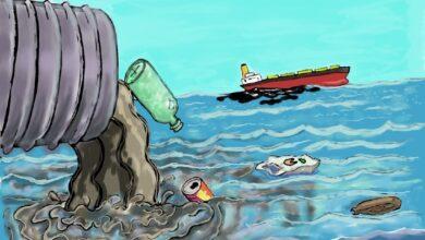 Photo of Anketa Danasa: Šta građani Srbije vide kao OSNOVNE EKOLOŠKE PROBLEME? (VIDEO)