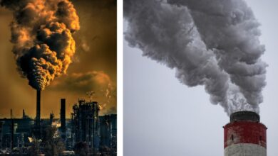 Photo of Kad vazduh ubija: Srbija na prvom mestu u Evropi po ZAGAĐENOSTI?!