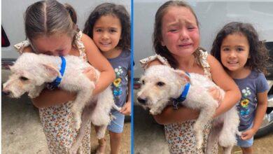 Photo of Devojčice ne prestaju da plaču od sreće nakon što su im PRONAŠLI IZGUBLJENOG PSIĆA