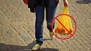Photo of Hrvatski parlament izglasao novi Zakon: ZABRANJENA UPOTREBA PLASTIČNIH KESA!