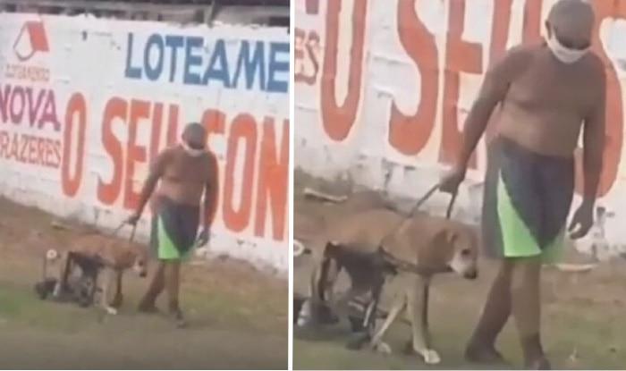 Photo of Ovaj stariji čovek SVAKO JUTRO IZVODI svog voljenog psa sa invaliditetom u šetnju (VIDEO)