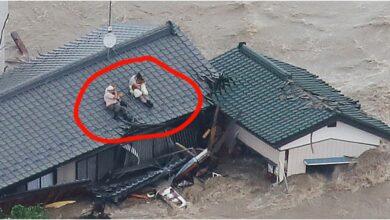 Photo of Hrabar stariji par ODBIO DA OSTAVI SVOJE PSE za vreme poplava u Japanu (VIDEO)