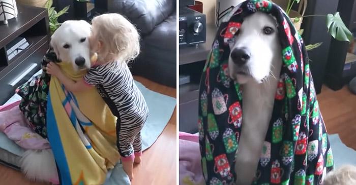Photo of LJUBAV: Dete je pokrilo svog psa ćebencetom da mu NE BUDE ZIMA (VIDEO)