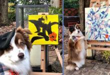 Photo of Pas slikar PRODAJE SVOJE SLIKE kako bi POMOGAO bolesnim ljudima i napuštenim životinjama (VIDEO)