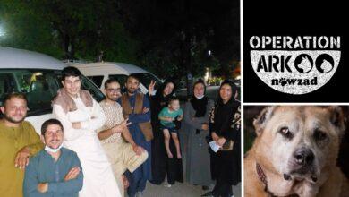 """Photo of Konačno je i osoblje prihvatilišta """"Nowzad"""" iz Avganistana – EVAKUISANO I NA SIGURNOM"""