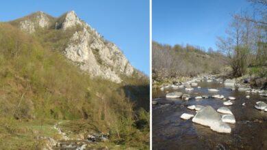 Photo of Planina Maljen proglašena za PREDEO IZUZETNIH ODLIKA