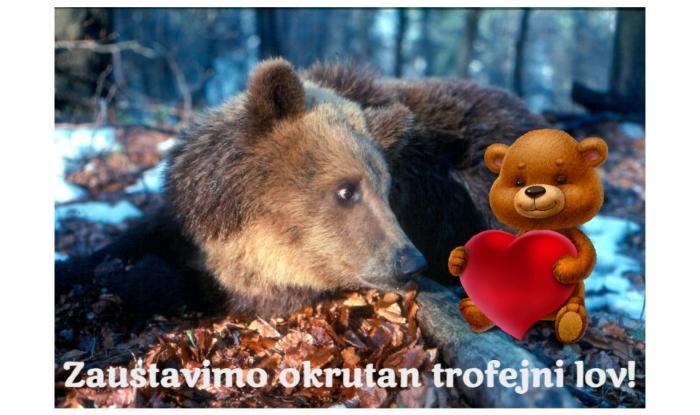 Photo of U Hrvatskoj pokrenuta peticija ZA SPAS MRKOG MEDVEDA