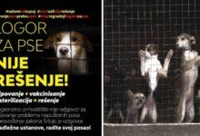 Photo of Udruženja POKRENULA KAMPANJU protiv najavljenog regionalnog azila za pse u Gadžinom Hanu
