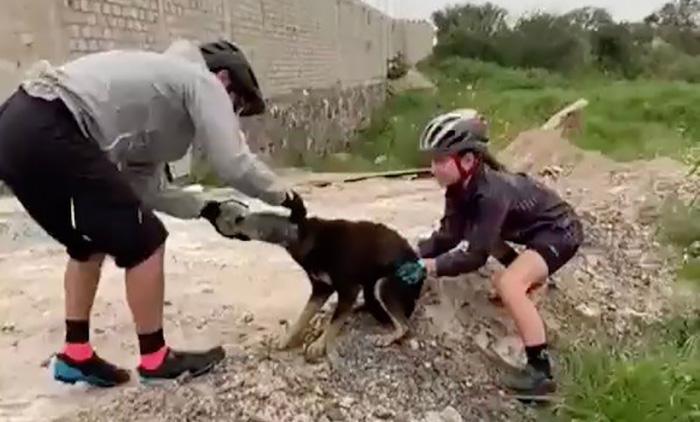 Photo of Biciklisti SPASILI PSA SA PLASTIČNOM FLAŠOM NA GLAVI (VIDEO)