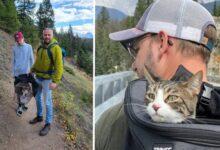 Photo of Kanada: Nestali mačak preživeo skoro 2 meseca U DIVLJINI NACIONALNOG PARKA!