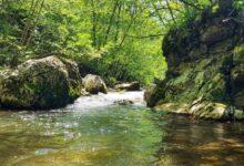 Photo of Zaustavljena i POSLEDNJA MINI HIDROELEKTRANA na reci Veliki Rzav!